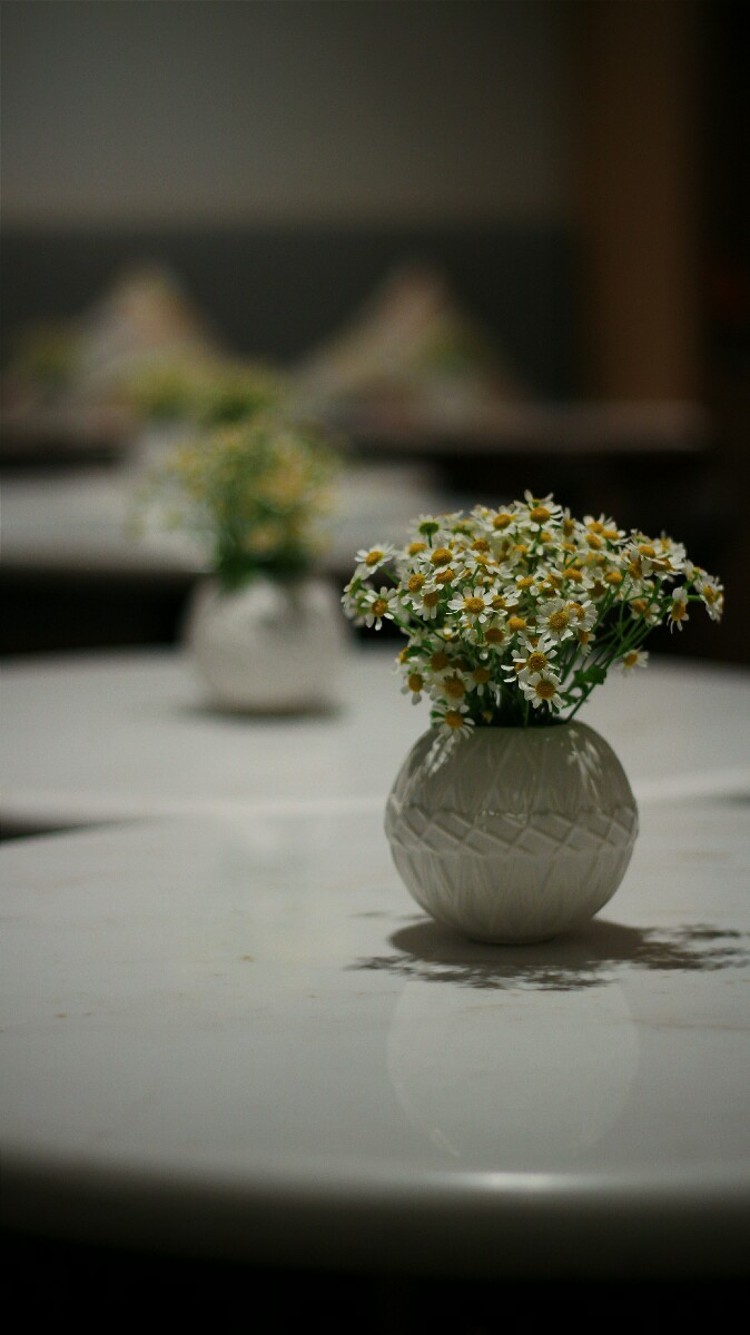 jajanbeken lewis and carrol tea flower market 14